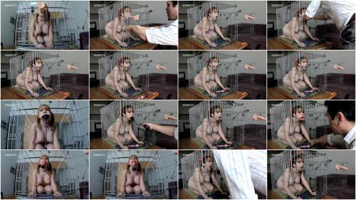 BDSM HD Bdsm Sex Videos Cherry  Dog Cage