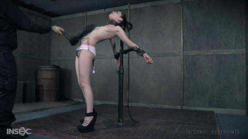 BDSM Slim Chances - Bobbi Dylan
