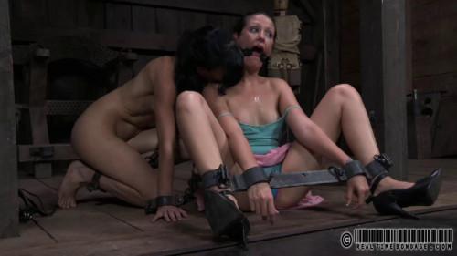 BDSM Saturday Night Fever