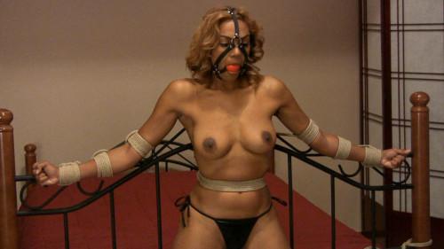 BDSM Bdsm Most Popular Girl Next Door Bondage Collection part 31