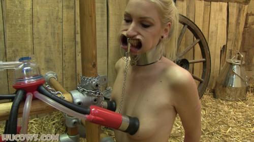 Sex Machines Arienh – mouth spreader