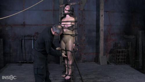BDSM Iron maiden