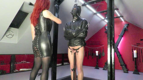 Femdom and Strapon Difficult slavedressage