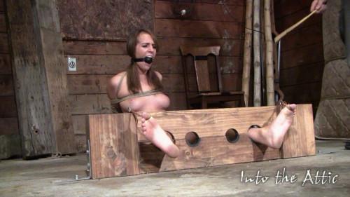 BDSM Alisha Adams Bondage