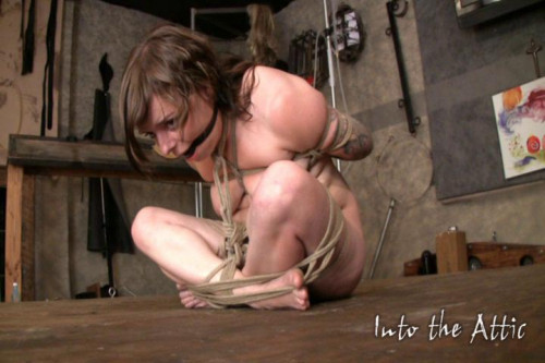BDSM Mega Unreal Wonderfull Sweet Vip Collection Into The Attic. Part 6.