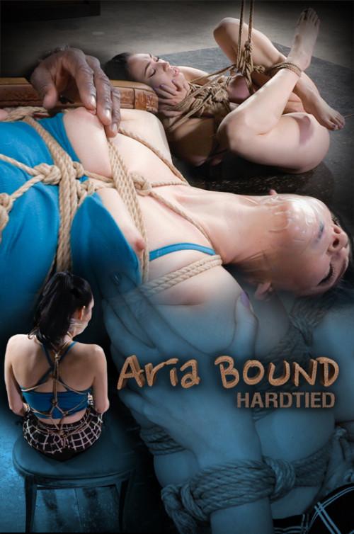 BDSM Aria Bound - Aria Alexander , Jack Hammer - HD 720p