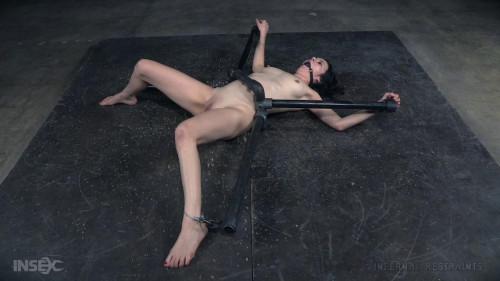 BDSM Waisted Slut  - Rita Rollins