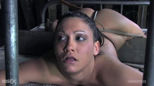 BDSM Bondage, spanking, hogtie and torture for sexy slut part 2