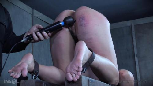 BDSM Chain Puppet