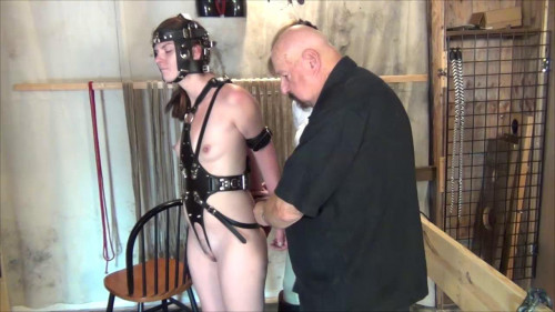 bdsm Blind Harnessed Bitted