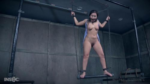 BDSM Pussy on a Perch  Gabriella Paltrova