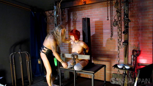 BDSM SP  Dolcett Chronicles Tenderizing the Meat part 1 - Abigail Dupree