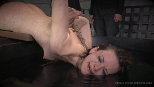 BDSM The Complete Defiling of Hazel Hypnotic