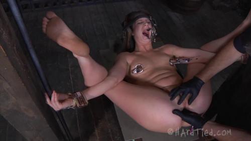 BDSM Cici Rhodes - Between the Lines