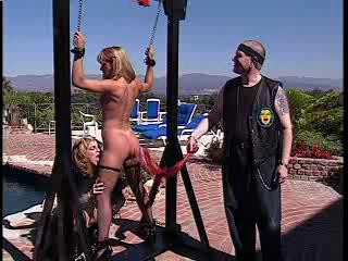 bdsm The Erotic World Of Shayla LaVeaux