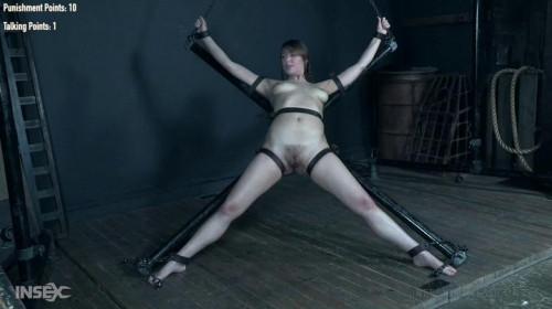 BDSM Wheel of Torment