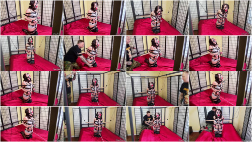 BDSM Lady Londyn A Strapping Predicament