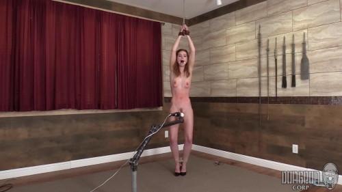 BDSM Luscious Beauty Bound Part 1