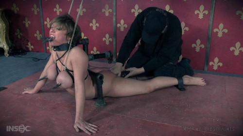 BDSM Stupid Slut Suffers Until She Squirts - Dee Williams