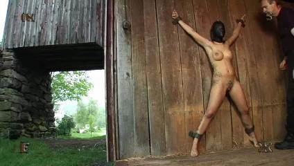 BDSM 47 Best Clips