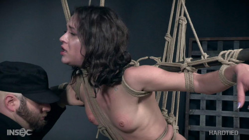 BDSM Alex More