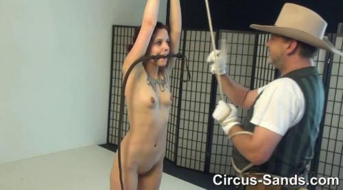 Whip test petgirl Marlin