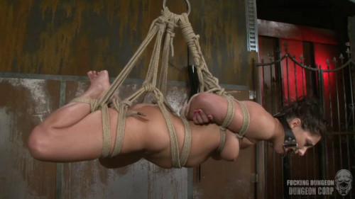 BDSM Do As You Wish Part 2