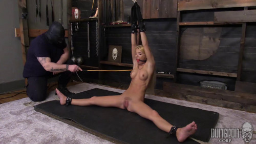 BDSM Kenzie Reeves - A Fine Piece of Bound Meat part 2