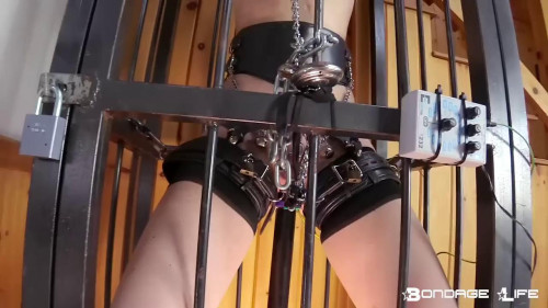 BDSM Caged Animal