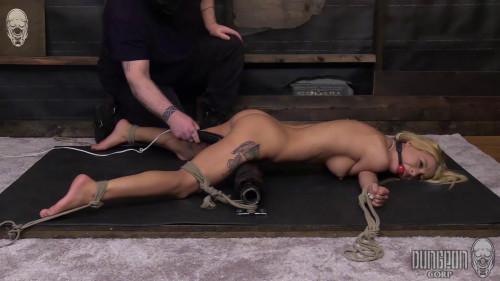 BDSM Kenzie Reeves - A Fine Piece of Bound Meat part 3