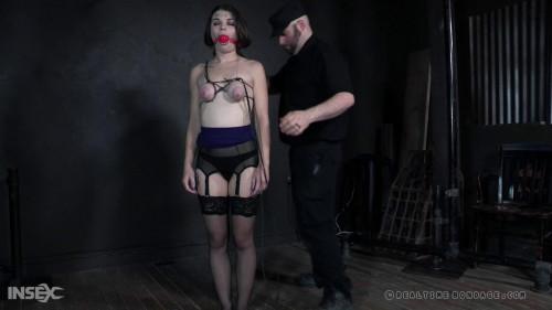 BDSM Blind Hole Part - Anastasia Rose