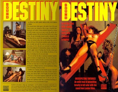 BDSM Bound Destiny