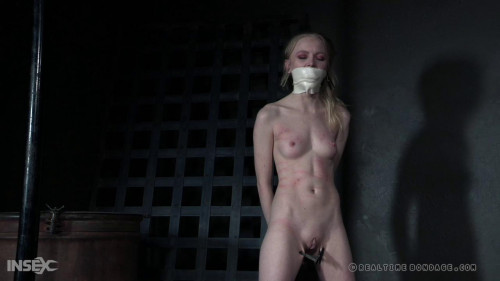 BDSM The  continues as Alice is whipped