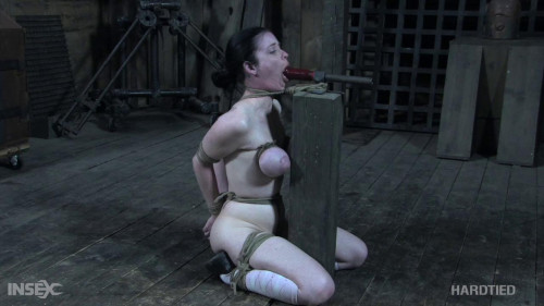 BDSM Sybil Hawthorne Getting Ahead