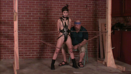 bdsm Bailey Pony Girl Test Part Five