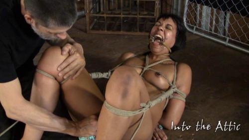 BDSM Marley Hogtie