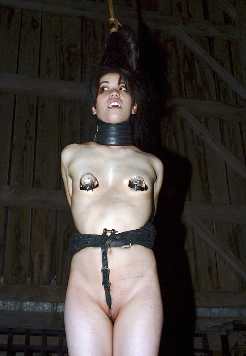 BDSM Felonie Caged Bonus , HD 720p