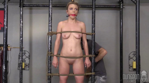 BDSM Molly Mae A Perfect Submissive 720p (2016)