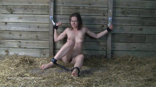 BDSM Simply Restraints