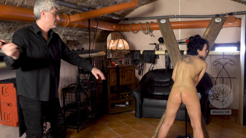 BDSM Stacy Is a Scaredy Cat Part 2