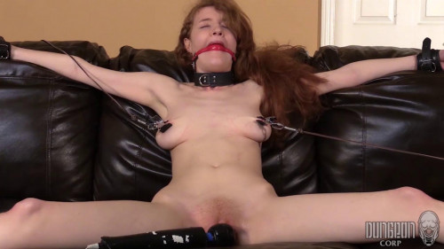 BDSM Abby Rains - Perfect Submission