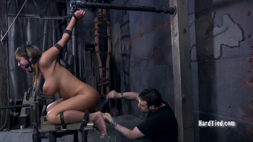 bdsm Heat Cycle - Trina Michaels