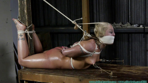BDSM Fun Turns into Punishment for Adara - Pt 3
