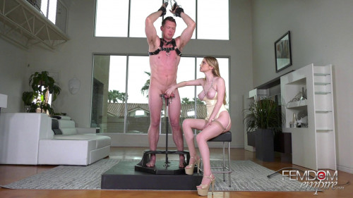 Femdom and Strapon Bunny Colby Cock Handler (2019)