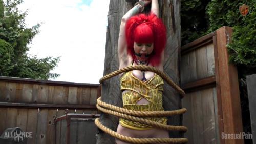 BDSM Captured Firecracker Redhead