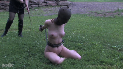 BDSM Ice Pony Pt.III - Calico