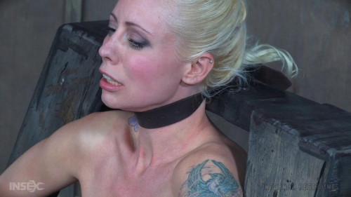 BDSM Llee high