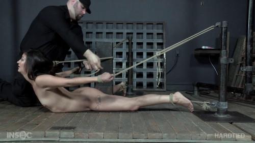 BDSM Summers Lovin - Coralee Summers