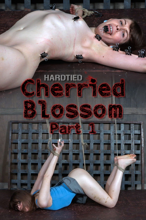 BDSM Cherried Blossom Part 1 - Blossom - London River