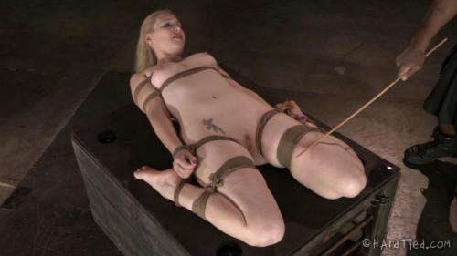 BDSM HT - The Blondie in Bondage - Delirious Hunter